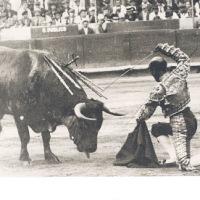 """Rafael """"El Gallo"""" y su teoría sobre la """"espantá"""" / Por José María Sotomayor"""