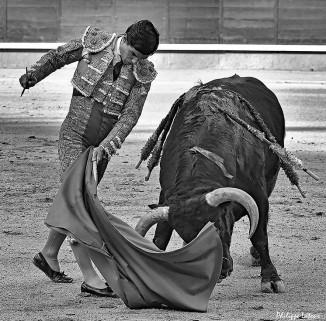 Donde las emociones no dan tregua y el arte es protagonista. ❤️ • • • #pabloaguado #sialostoros #españa🇪🇸 #arte #cultura #tauromaquia #toros #toreros by @paguadocdf - Imgtagram