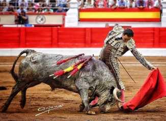 """El mejor Cid se despidió a lo grande de Santander cuajando extraordinariamente a """"Timonero"""" de La Quinta Reposted from @firma_arjona  _ _ _ _ _ _ _ _ _ _ _ _ _ _ _ _ _ _ _ _ _ _ _ _ _ _ _ _ _ _  #Afitauro #Tauromaquia #Toreo #Toros #CampoBravo #HablemosDeToros #Cultura #Bullfight #Afición #CuandoLaAficiónSeConvierteEnPasión #Toros #Toreo #Bravura by @afitauro_ - Imgtagram"""