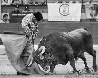 ... Mientras queden estrellas podemos seguir pidiendo deseos ... . Emilio de Justo - Jaén 2019  Fotografía: Rebeca Hernando | @r.hernando.photography | @emiliosdj | @emiliodejusto  _ _ _ _ _ _ _ _ _ _ _ _ _ _ _ _ _ _ _ _ _ _ _ _ _ _ _ _ _ _  #Afitauro #Tauromaquia #Toreo #Toros #CampoBravo #HablemosDeToros #Cultura #Bullfight #Afición #CuandoLaAficiónSeConvierteEnPasión #Toros #Toreo #Bravura by @afitauro_ - Imgtagram